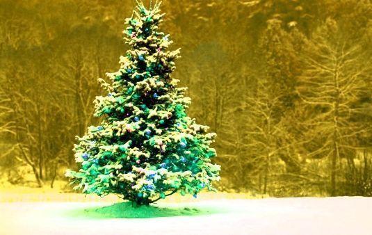 SEO en Navidad