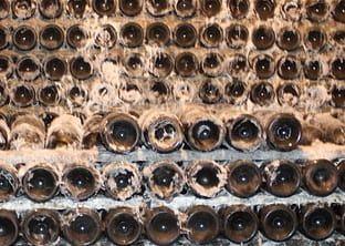 Posicionamiento seo La Rioja