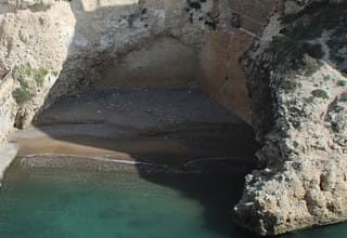 SEO Melilla